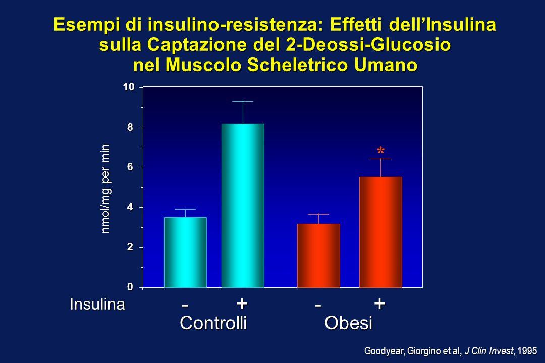 Esempi di insulino-resistenza: Effetti dellInsulina Esempi di insulino-resistenza: Effetti dellInsulina sulla Captazione del 2-Deossi-Glucosio nel Mus