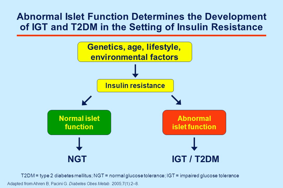 Possible Alternative Algorithm of Therapy for Type 2 Diabetes Oral agent 2 Oral agents 3 Oral agents Add Insulin Earlier in the Algorithm Severe symptoms Severe hyperglycaemiaSevere hyperglycaemia Ketosis Pregnancy Inadequate nonpharmacologic therapy