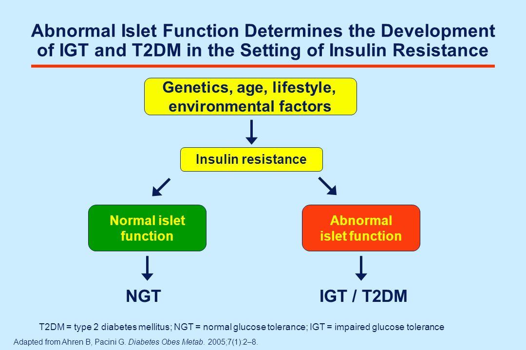 Adapted from International Diabetes Center.Type 2 Diabetes BASICS.