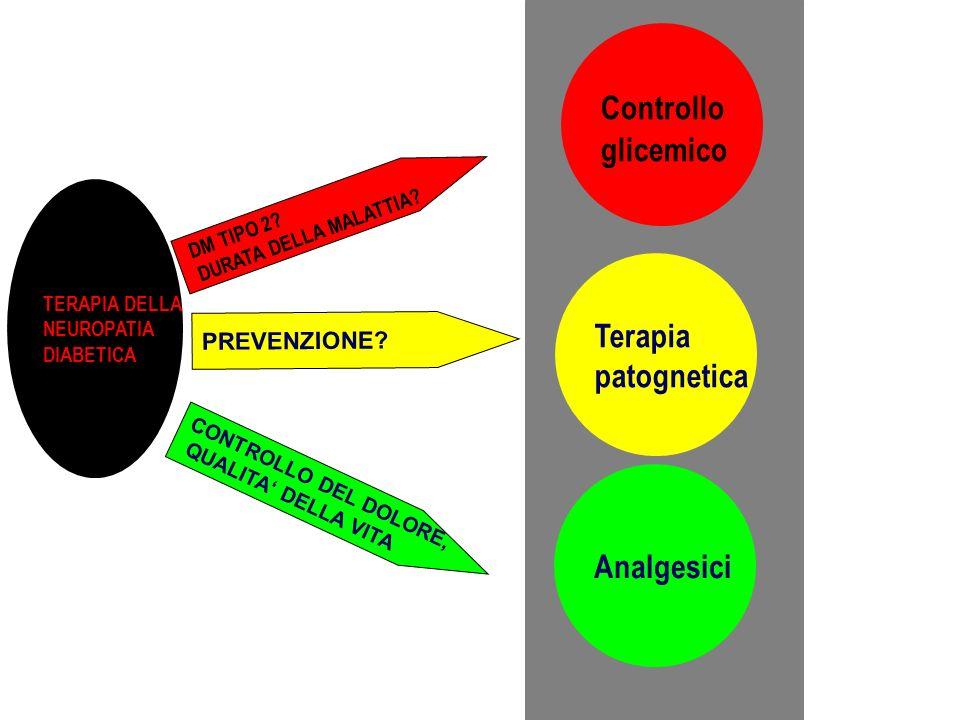 CONTROLLO DEL DOLORE, QUALITA DELLA VITA Controllo glicemico Analgesici Terapia patognetica DM TIPO 2? DURATA DELLA MALATTIA? PREVENZIONE? TERAPIA DEL