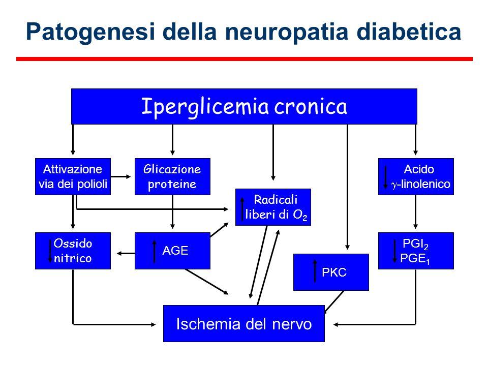 Iperglicemia cronica Attivazione via dei polioli Glicazione proteine Acido -linolenico Ossido nitrico AGE Radicali liberi di O 2 PGI 2 PGE 1 Ischemia