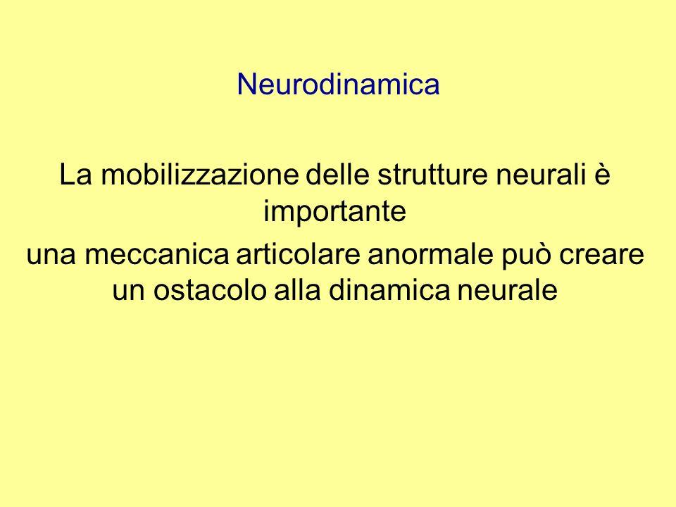 Neurodinamica Test di tensione per verificare se il sistema nervoso può stirarsi, scivolare senza sintomi le tecniche di mobilizzazione si applicano, in un primo momento, lontano dallarea dei sintomi, per esempio lestensione del ginocchio con lanca in flessione limitata o anche una simile tecnica sullarto sano
