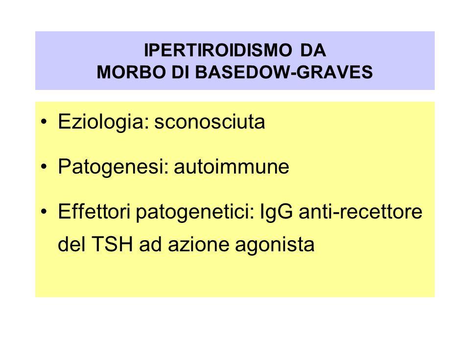 Eziologia: sconosciuta Patogenesi: autoimmune Effettori patogenetici: IgG anti-recettore del TSH ad azione agonista IPERTIROIDISMO DA MORBO DI BASEDOW