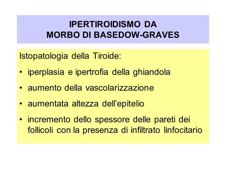 Istopatologia della Tiroide: iperplasia e ipertrofia della ghiandola aumento della vascolarizzazione aumentata altezza dellepitelio incremento dello s