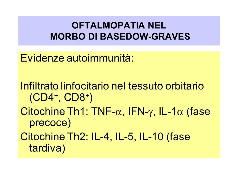 Evidenze autoimmunità: Infiltrato linfocitario nel tessuto orbitario (CD4 +, CD8 + ) Citochine Th1: TNF-, IFN-, IL-1 (fase precoce) Citochine Th2: IL-