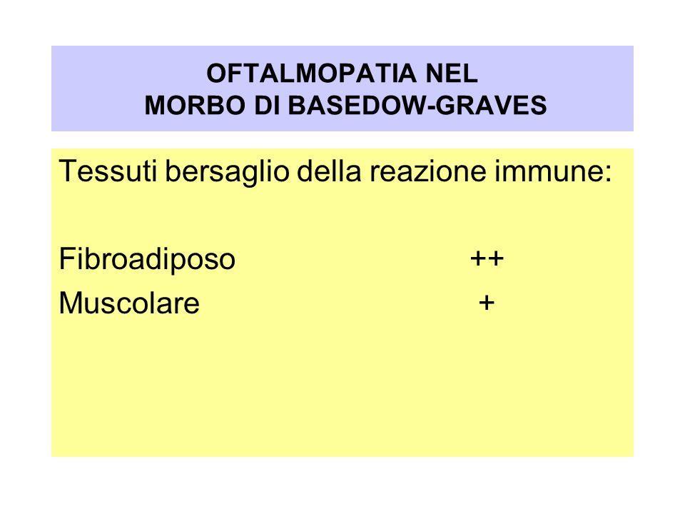 Tessuti bersaglio della reazione immune: Fibroadiposo++ Muscolare + OFTALMOPATIA NEL MORBO DI BASEDOW-GRAVES