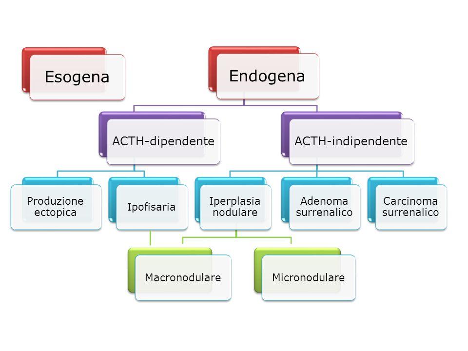 PATOLOGIA RARA: 2-3 casi/milione/anno TERAPIA STEROIDEA CRONICA: MOLTO FREQUENTE (Asma, malattie autoimmuni, neoplasie) PATOLOGIA RARA: 2-3 casi/milione/anno TERAPIA STEROIDEA CRONICA: MOLTO FREQUENTE (Asma, malattie autoimmuni, neoplasie) Epidemiologia ACTH-dipendenti80-85% Adenoma ipofisario65-70% Forme ectopiche10-15% Idiopatiche1-4% ACTH-indipendenti15% Adenoma/carcinoma surrenalico12% Iperplasia macronodulare1% Iperplasia micronodulare1%