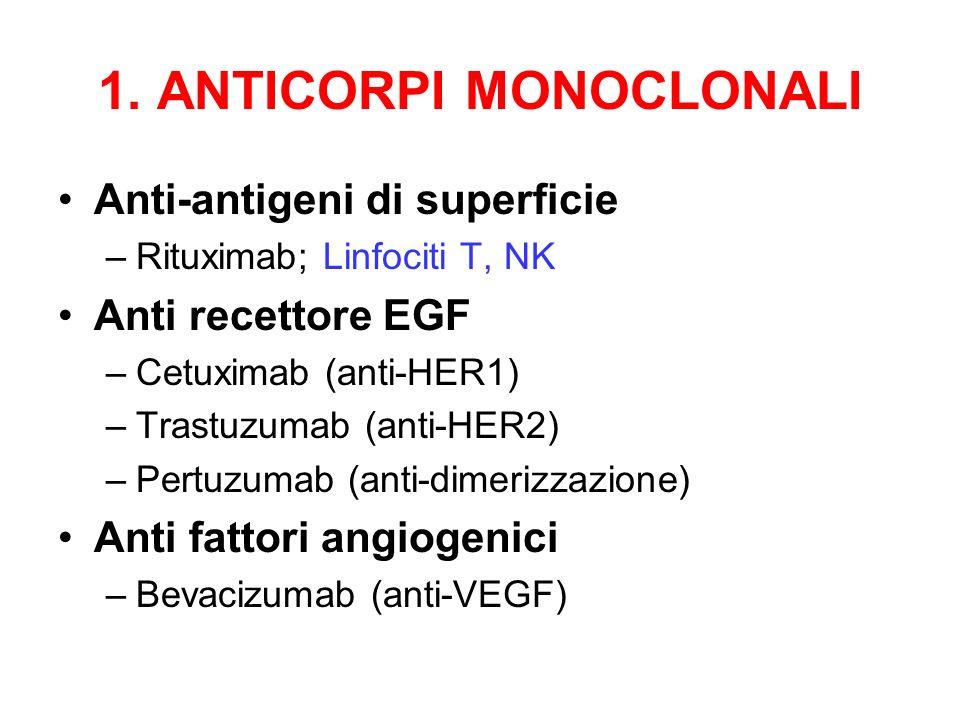 1. ANTICORPI MONOCLONALI Anti-antigeni di superficie –Rituximab; Linfociti T, NK Anti recettore EGF –Cetuximab (anti-HER1) –Trastuzumab (anti-HER2) –P