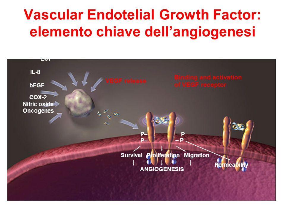 Vascular Endotelial Growth Factor: elemento chiave dellangiogenesi VEGF = vascular endothelial growth factor; IGF = insulin-like growth factor PDGF =