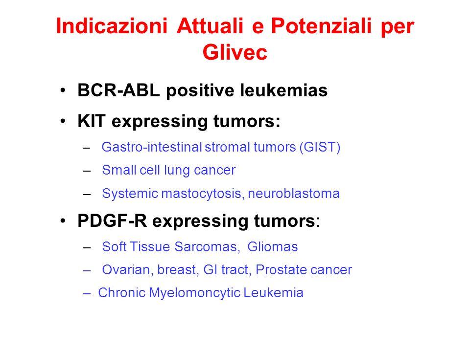 Indicazioni Attuali e Potenziali per Glivec BCR-ABL positive leukemias KIT expressing tumors: – Gastro-intestinal stromal tumors (GIST) – Small cell l