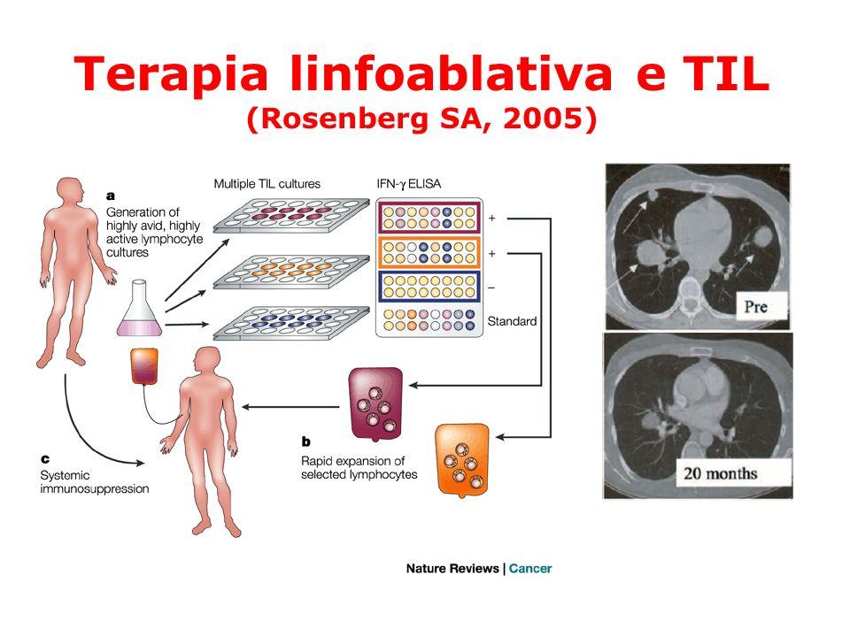 Terapia linfoablativa e TIL (Rosenberg SA, 2005)