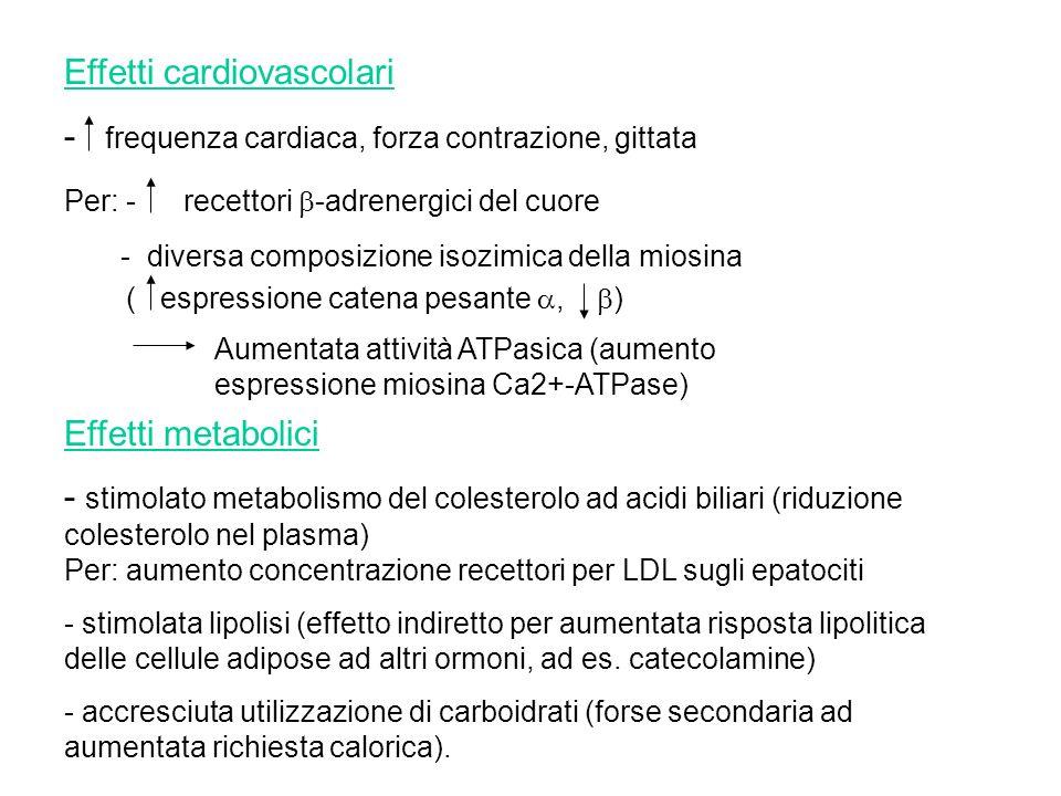 Effetti cardiovascolari - frequenza cardiaca, forza contrazione, gittata Per: - recettori -adrenergici del cuore - diversa composizione isozimica dell