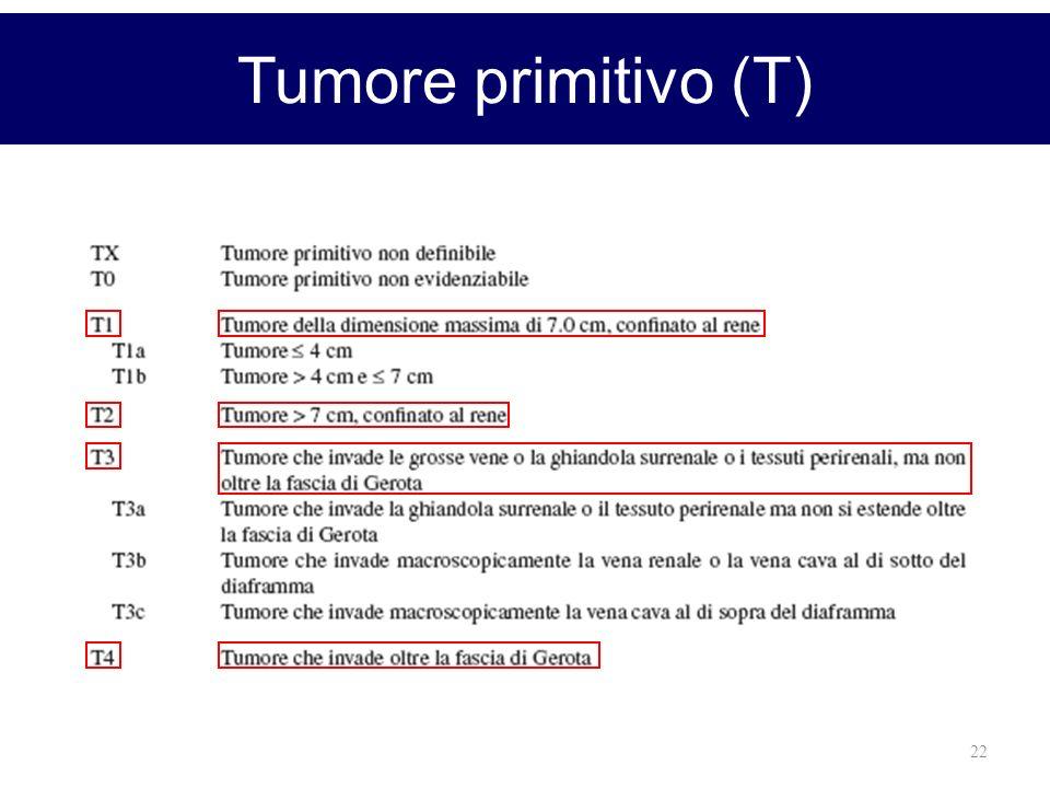 22 Tumore primitivo (T)