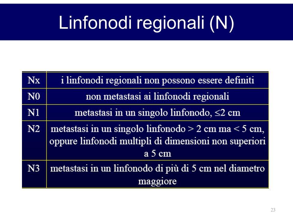 23 Linfonodi regionali (N)