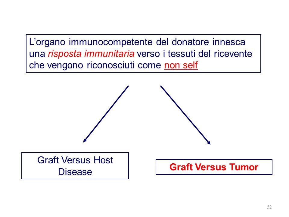 52 Lorgano immunocompetente del donatore innesca una risposta immunitaria verso i tessuti del ricevente che vengono riconosciuti come non self Graft V