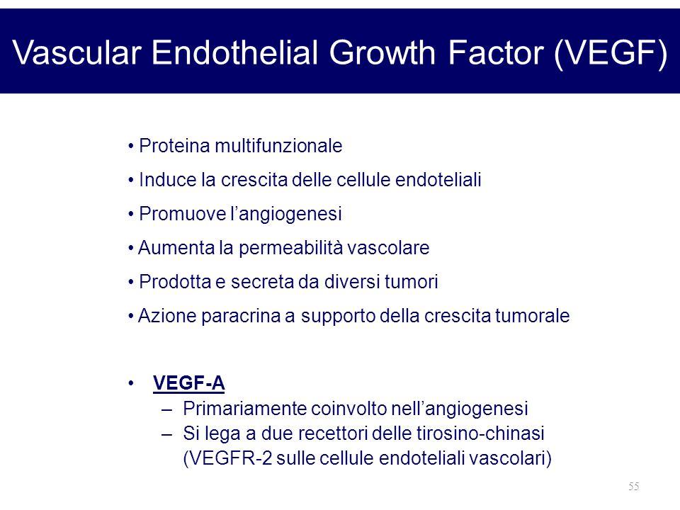 55 Vascular Endothelial Growth Factor (VEGF) VEGF-A –Primariamente coinvolto nellangiogenesi –Si lega a due recettori delle tirosino-chinasi (VEGFR-2
