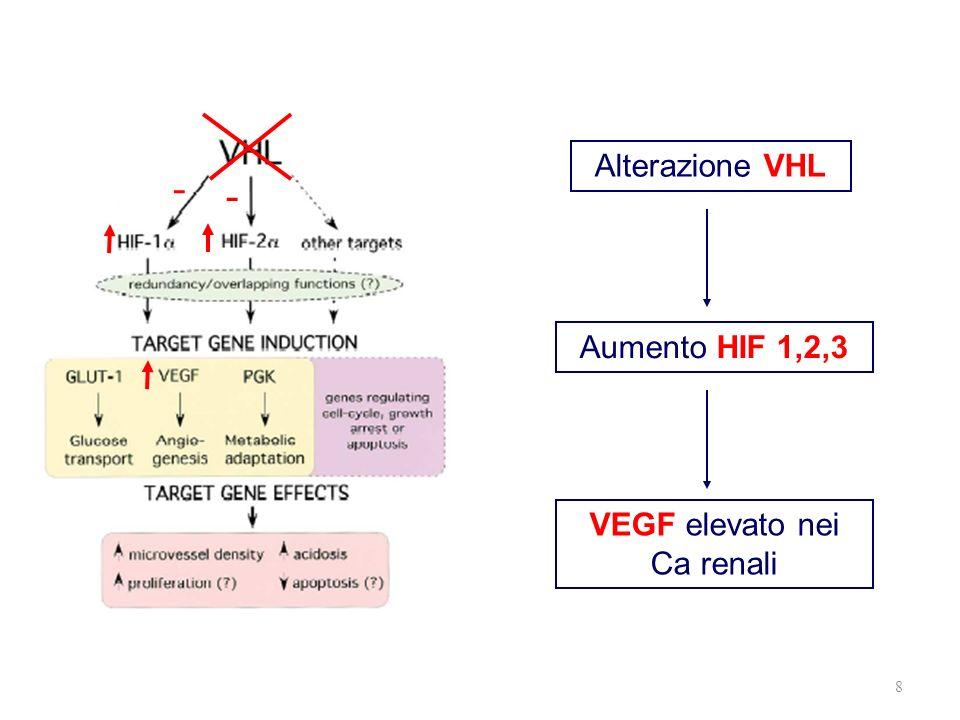 8 - - Alterazione VHL Aumento HIF 1,2,3 VEGF elevato nei Ca renali