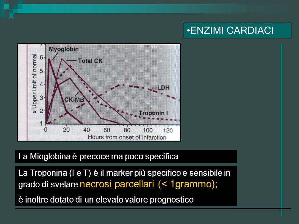 ENZIMI CARDIACI La Mioglobina è precoce ma poco specifica La Troponina (I e T) è il marker più specifico e sensibile in grado di svelare necrosi parce
