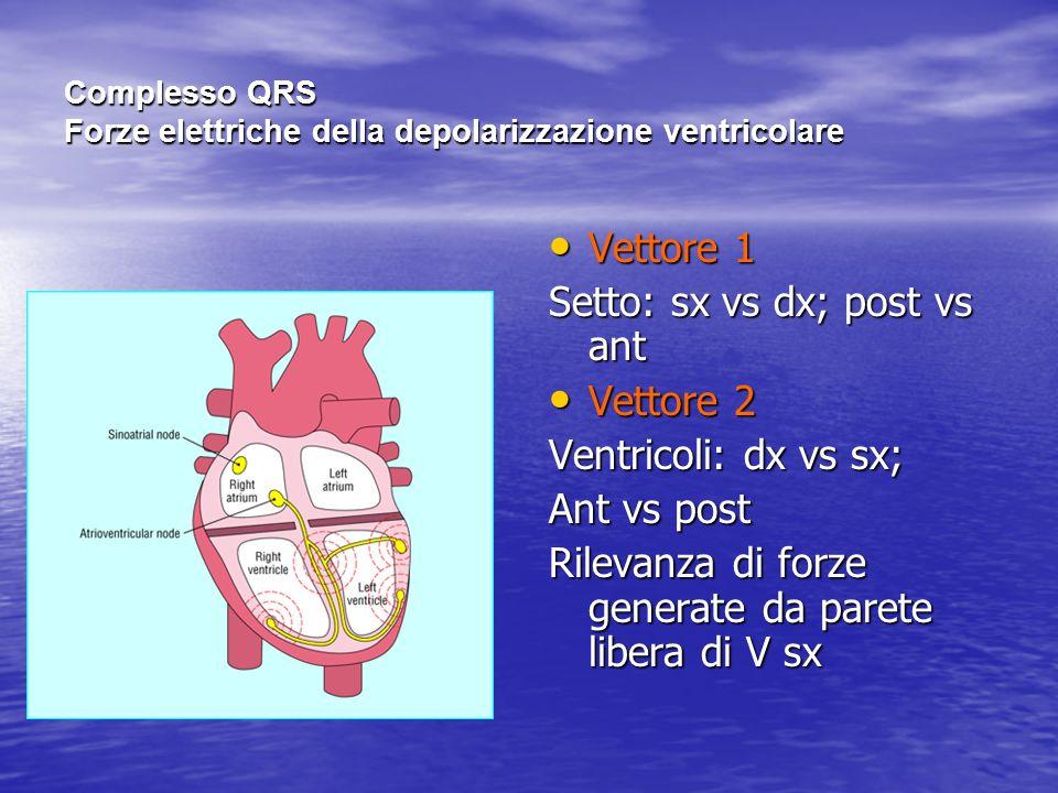 Complesso QRS Forze elettriche della depolarizzazione ventricolare Vettore 1 Vettore 1 Setto: sx vs dx; post vs ant Vettore 2 Vettore 2 Ventricoli: dx