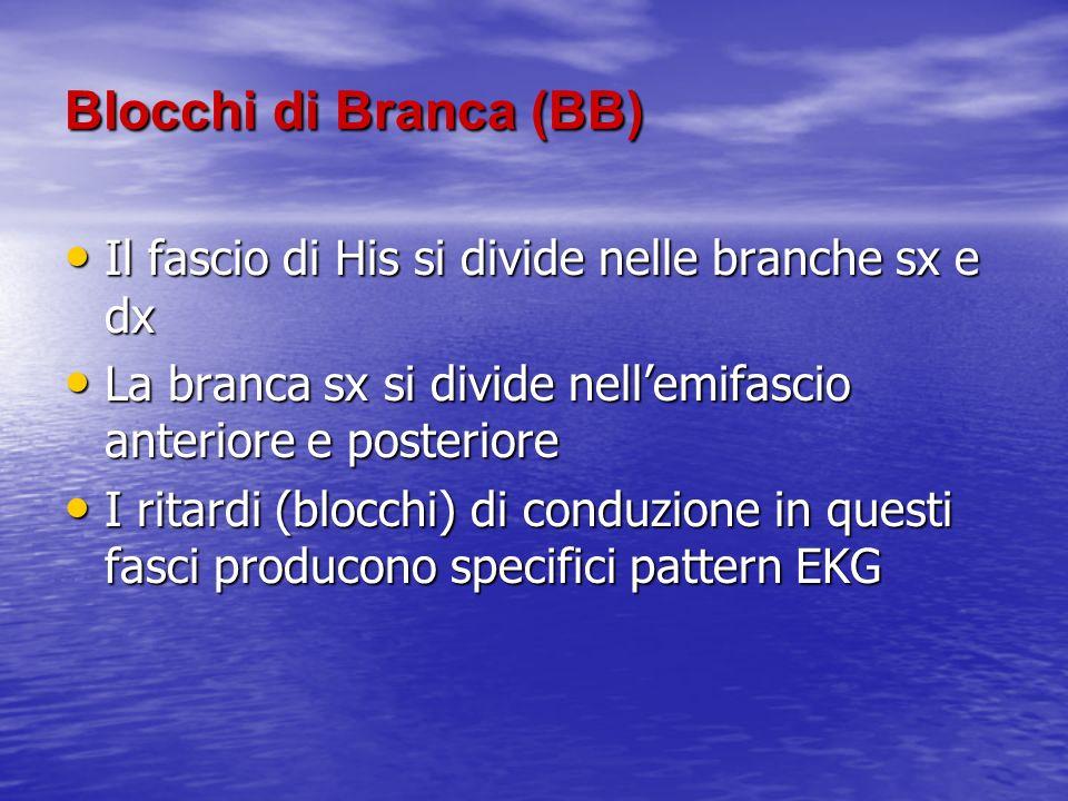 Blocchi di Branca (BB) Il fascio di His si divide nelle branche sx e dx Il fascio di His si divide nelle branche sx e dx La branca sx si divide nellem