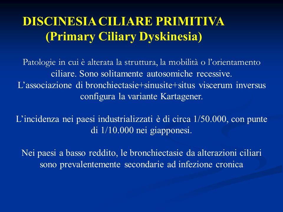DISCINESIA CILIARE PRIMITIVA (Primary Ciliary Dyskinesia) Patologie in cui è alterata la struttura, la mobilità o lorientamento ciliare. Sono solitame