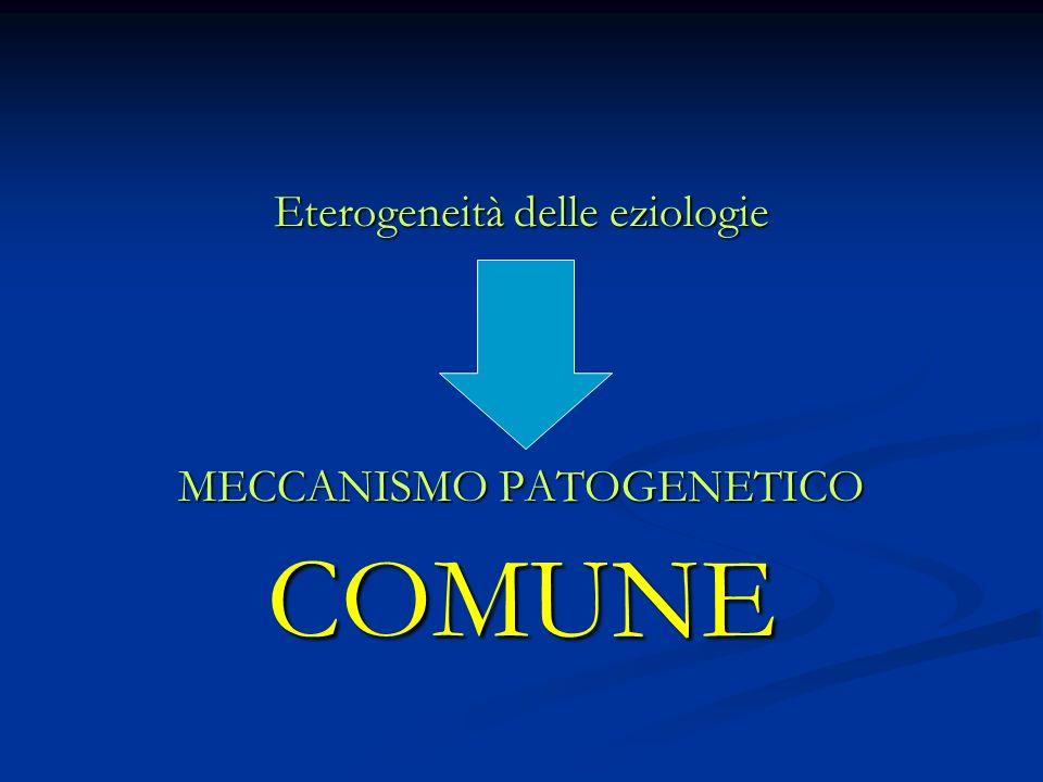 Eterogeneità delle eziologie MECCANISMO PATOGENETICO COMUNE