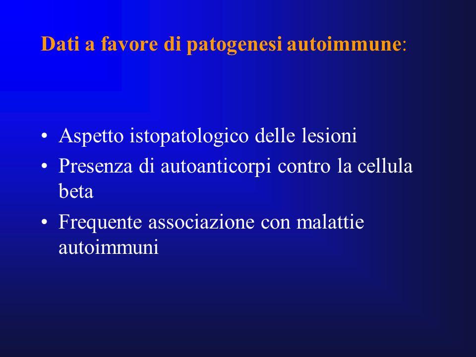 Dati a favore di patogenesi autoimmune: Aspetto istopatologico delle lesioni Presenza di autoanticorpi contro la cellula beta Frequente associazione c