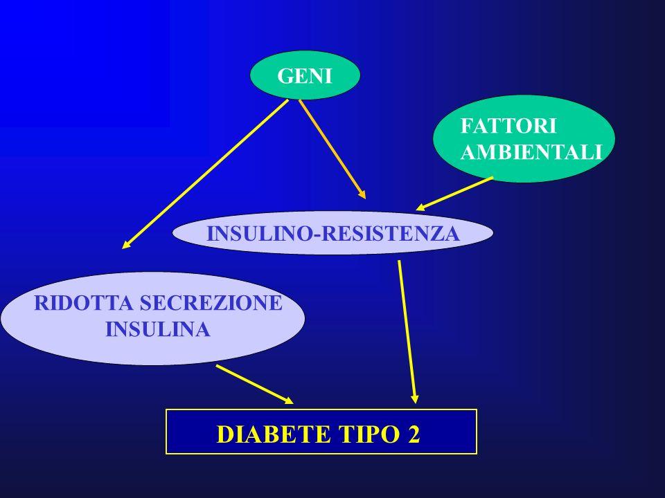 GENI INSULINO-RESISTENZA FATTORI AMBIENTALI RIDOTTA SECREZIONE INSULINA DIABETE TIPO 2