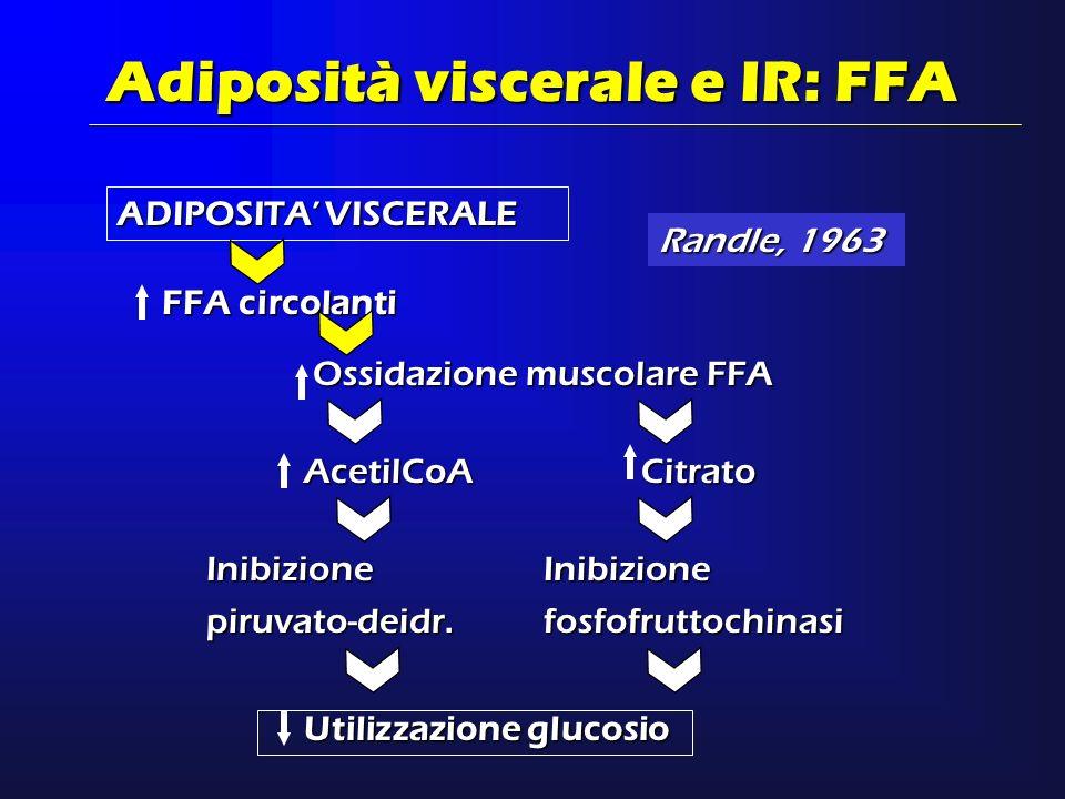 ADIPOSITA VISCERALE Adiposità viscerale e IR: FFA FFA circolanti Ossidazione muscolare FFA AcetilCoACitrato Inibizionepiruvato-deidr.Inibizionefosfofr