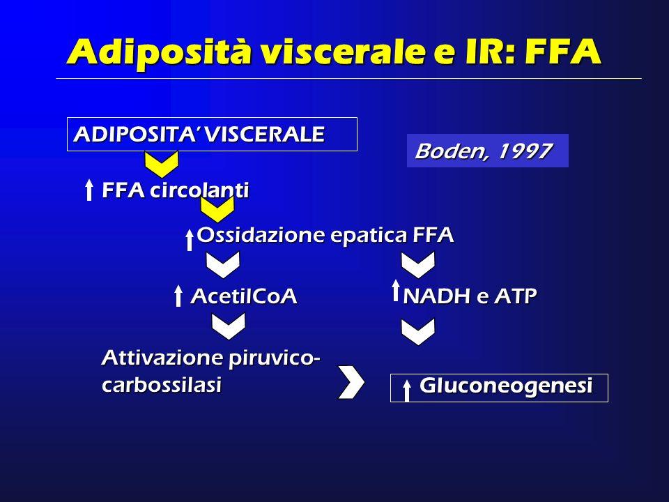 ADIPOSITA VISCERALE Adiposità viscerale e IR: FFA FFA circolanti Ossidazione epatica FFA AcetilCoA NADH e ATP Attivazione piruvico- carbossilasi Gluco
