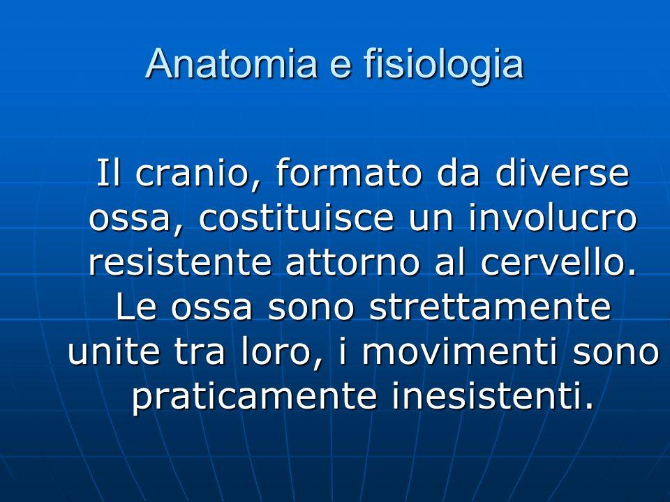 Anatomia e fisiologia Il cranio, formato da diverse ossa, costituisce un involucro resistente attorno al cervello.