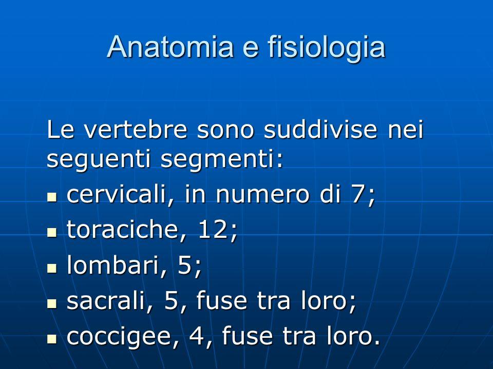 Anatomia e fisiologia Le vertebre sono suddivise nei seguenti segmenti: cervicali, in numero di 7; cervicali, in numero di 7; toraciche, 12; toraciche, 12; lombari, 5; lombari, 5; sacrali, 5, fuse tra loro; sacrali, 5, fuse tra loro; coccigee, 4, fuse tra loro.