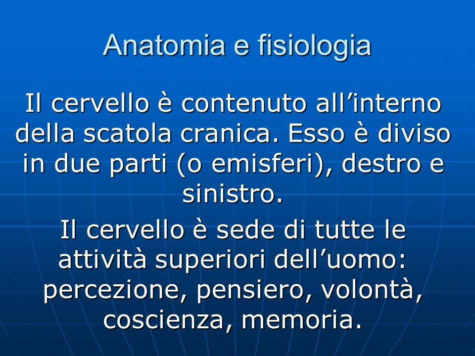 Anatomia e fisiologia Il cervello è contenuto allinterno della scatola cranica.