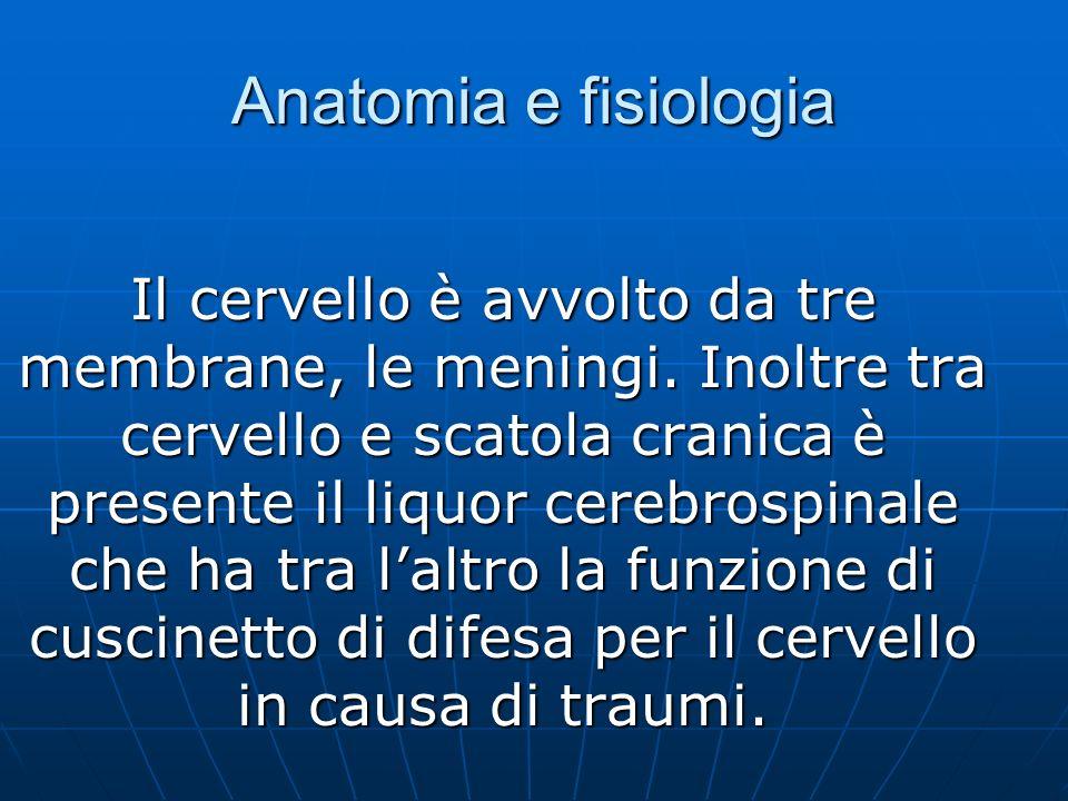 Anatomia e fisiologia Il cervello è avvolto da tre membrane, le meningi.