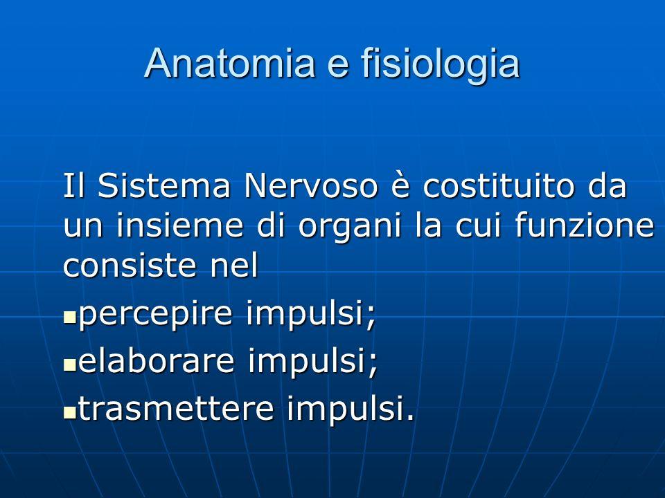 Anatomia e fisiologia Il Sistema Nervoso è costituito da un insieme di organi la cui funzione consiste nel percepire impulsi; percepire impulsi; elaborare impulsi; elaborare impulsi; trasmettere impulsi.