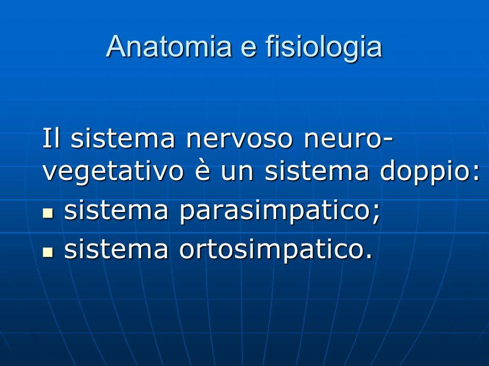 Anatomia e fisiologia Il sistema nervoso neuro- vegetativo è un sistema doppio: sistema parasimpatico; sistema parasimpatico; sistema ortosimpatico.