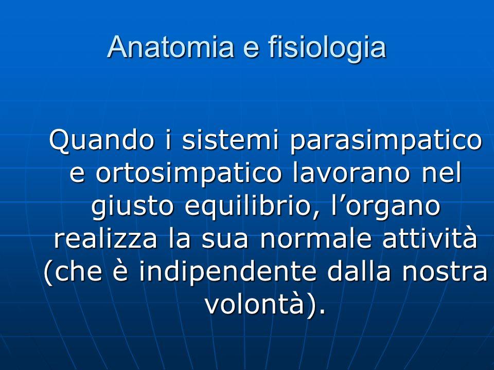 Anatomia e fisiologia Quando i sistemi parasimpatico e ortosimpatico lavorano nel giusto equilibrio, lorgano realizza la sua normale attività (che è indipendente dalla nostra volontà).