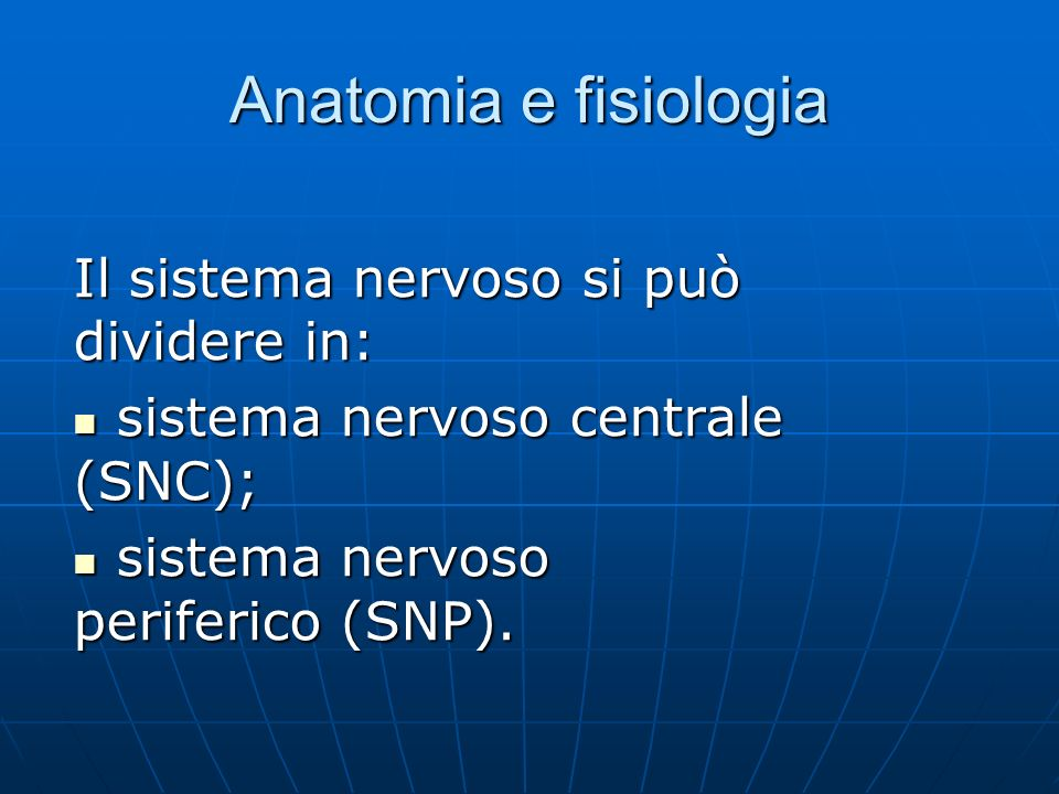 Anatomia e fisiologia Il sistema nervoso si può dividere in: sistema nervoso centrale (SNC); sistema nervoso centrale (SNC); sistema nervoso periferico (SNP).