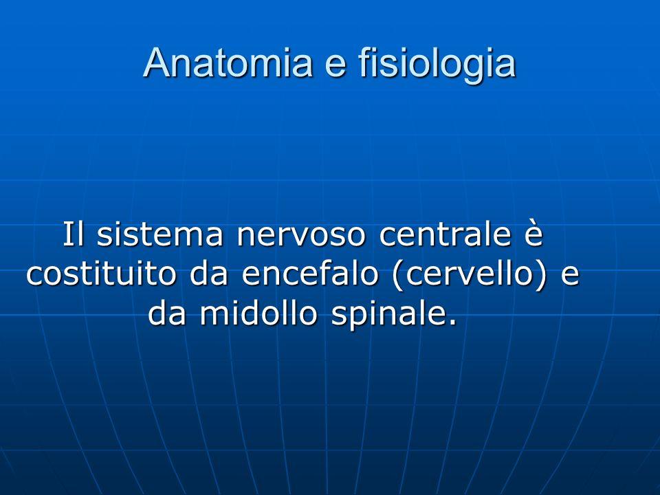 Anatomia e fisiologia Il sistema nervoso centrale è costituito da encefalo (cervello) e da midollo spinale.