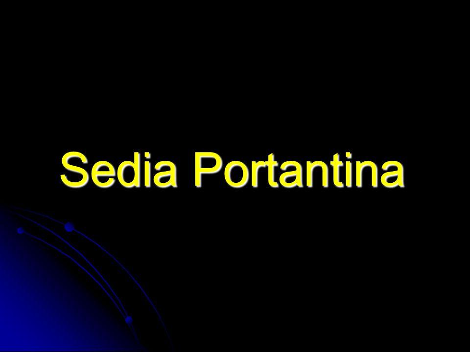 Sedia Portantina