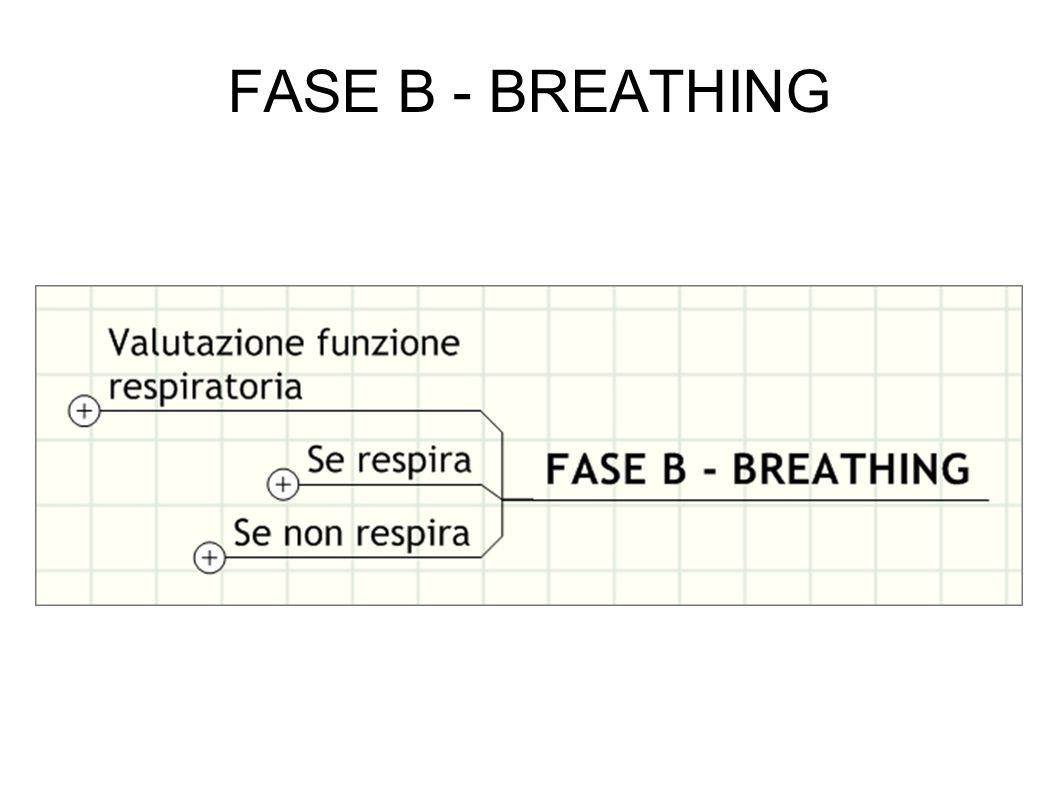 FASE B - BREATHING