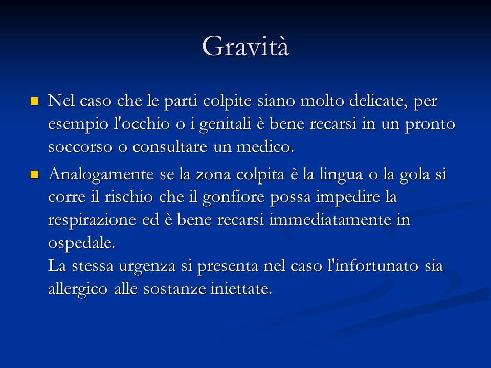 Morso di vipera In Italia esistono 4 specie di vipere.