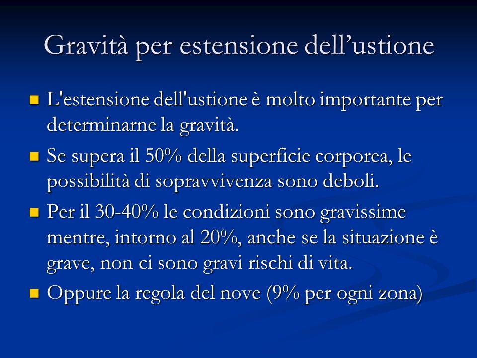 Gravità per estensione dellustione L'estensione dell'ustione è molto importante per determinarne la gravità. L'estensione dell'ustione è molto importa