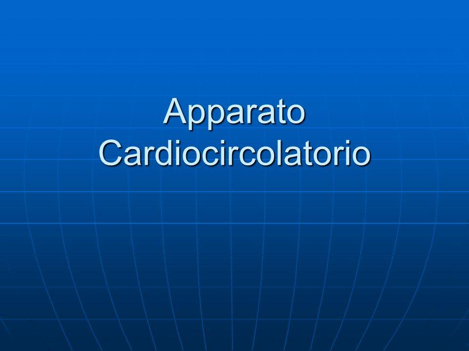 La Grande circolazione è linsieme dei vasi che porta il sangue dal cuore alla periferia e dalla periferia al cuore.