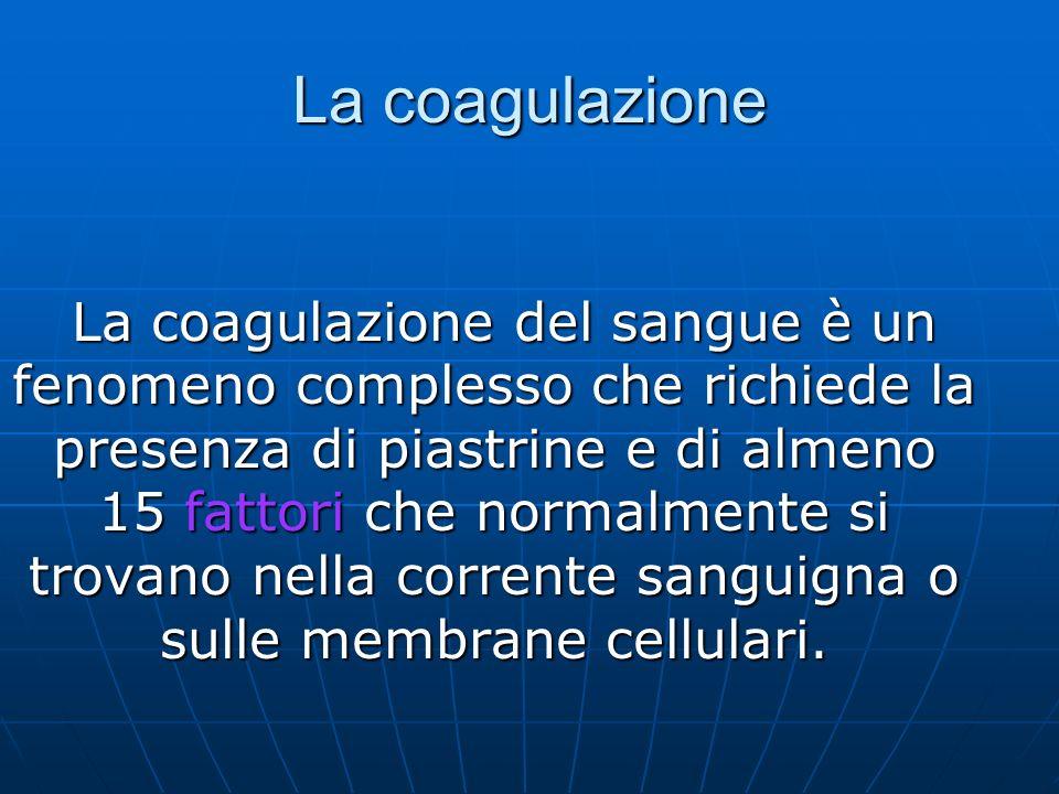 La coagulazione La coagulazione del sangue è un fenomeno complesso che richiede la presenza di piastrine e di almeno 15 fattori che normalmente si trovano nella corrente sanguigna o sulle membrane cellulari.