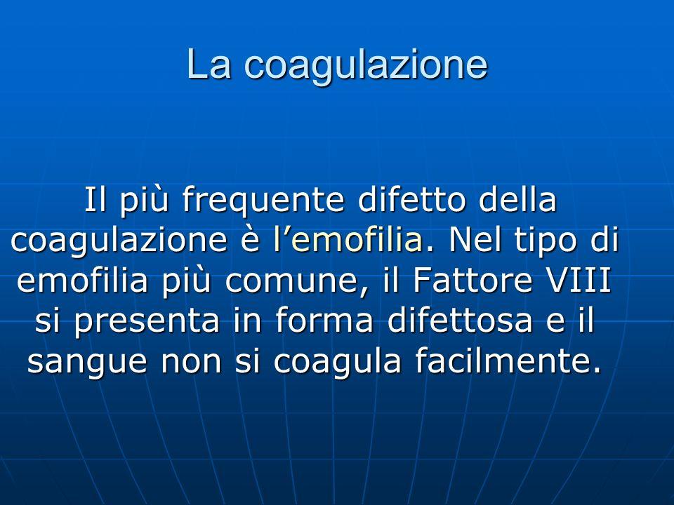 La coagulazione Il più frequente difetto della coagulazione è lemofilia. Nel tipo di emofilia più comune, il Fattore VIII si presenta in forma difetto