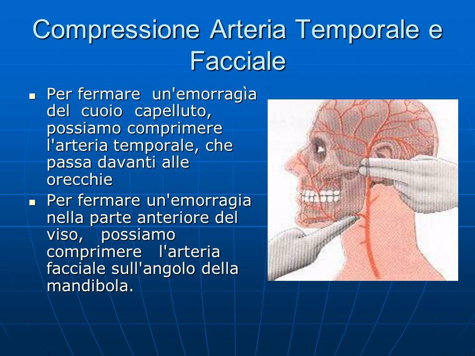 Compressione Arteria Temporale e Facciale Per fermare un emorragìa del cuoio capelluto, possiamo comprimere l arteria temporale, che passa davanti alle orecchie Per fermare un emorragìa del cuoio capelluto, possiamo comprimere l arteria temporale, che passa davanti alle orecchie Per fermare un emorragia nella parte anteriore del viso, possiamo comprimere l arteria facciale sull angolo della mandibola.