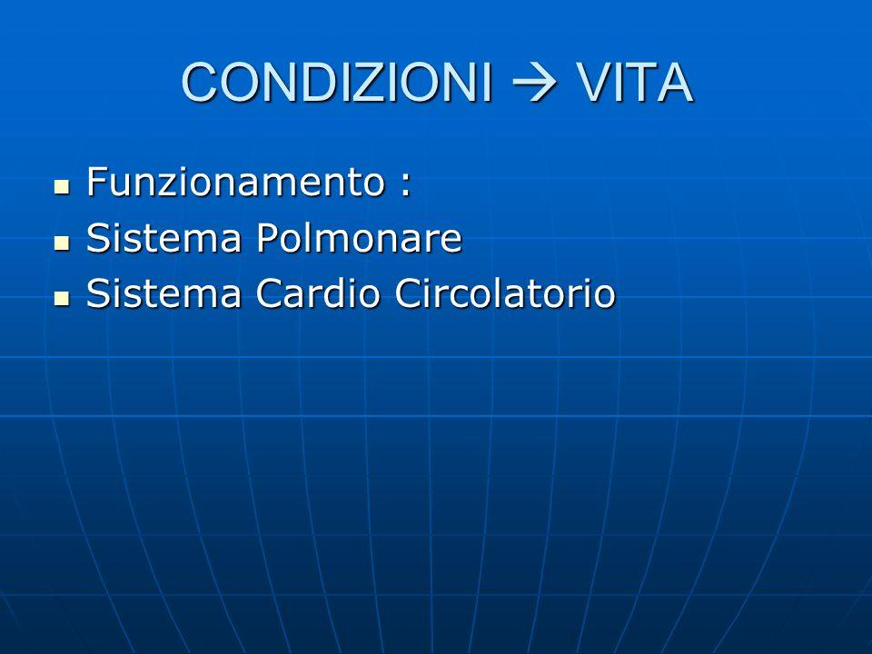CONDIZIONI VITA Funzionamento : Funzionamento : Sistema Polmonare Sistema Polmonare Sistema Cardio Circolatorio Sistema Cardio Circolatorio