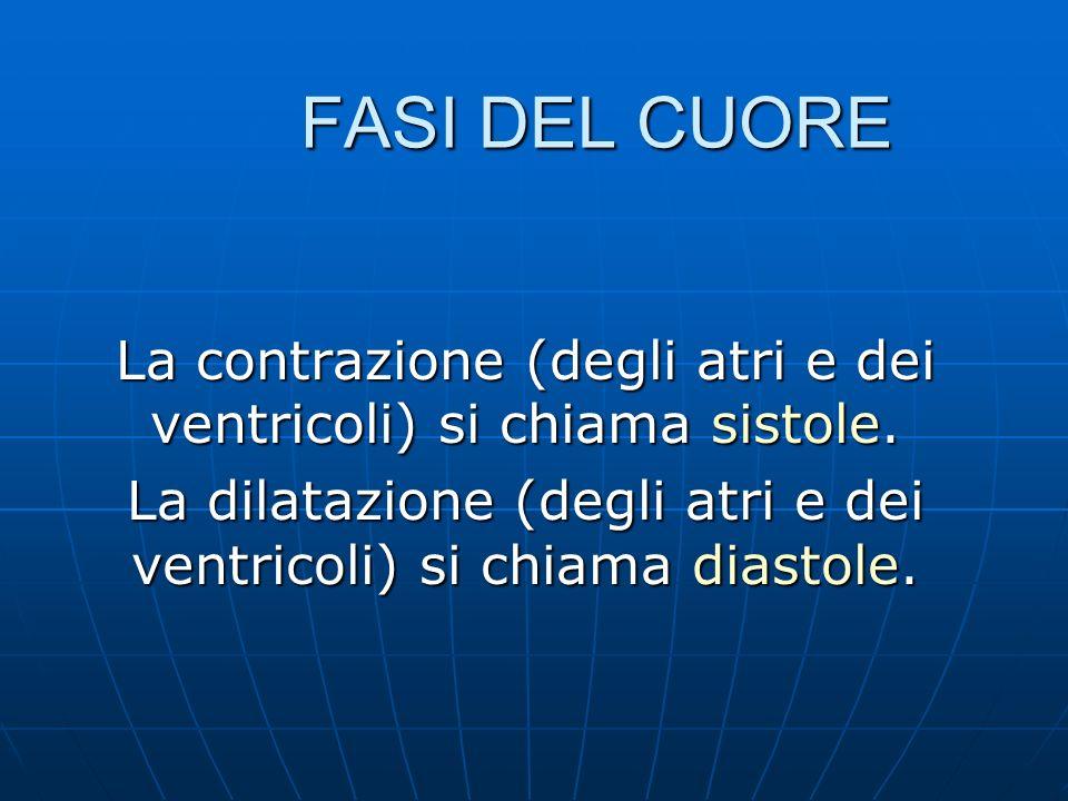 La contrazione (degli atri e dei ventricoli) si chiama sistole. La dilatazione (degli atri e dei ventricoli) si chiama diastole. FASI DEL CUORE