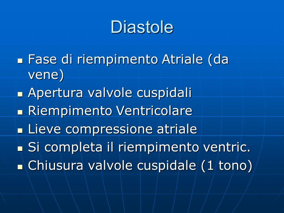 Diastole Fase di riempimento Atriale (da vene) Fase di riempimento Atriale (da vene) Apertura valvole cuspidali Apertura valvole cuspidali Riempimento